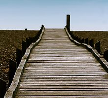 Dungeness Walkway by Ashley Crombet-Beolens