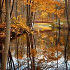 Beautiful Reflections by Jeff Palm Photography