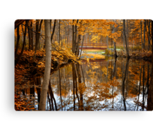 Beautiful Reflections Canvas Print