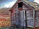 The old red shed by Marcia Rubin