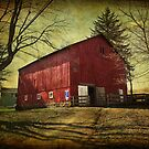 Equine Stables by vigor