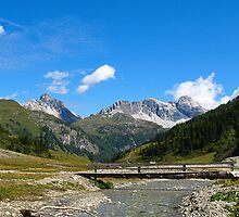 A Foot Bridge over an Alpine Stream. by Lee d'Entremont