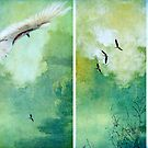 Flight by Margi