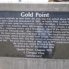 About Gold Point Nevada by marilyn diaz