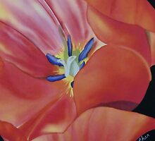 Tulip by khchan