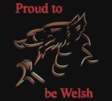 Proud to be Welsh by sjbaldwin
