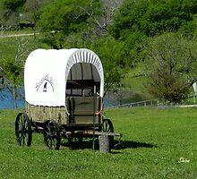 Texas Wagon by Shiva77