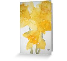 Awash with Daffs Greeting Card