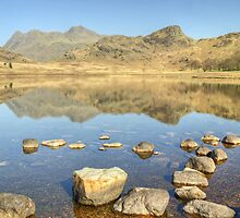 Blea Tarn...Views Of The Pikes by Jamie  Green