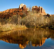 View to Cathedral Rock, Sedona by Sue Knowles