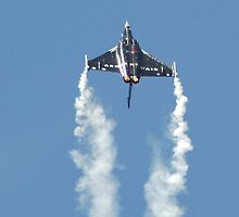 Rafale Demo looping by Matthieu PANNIER