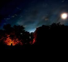 The New Moon by Bendinglife