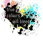 True Colours Will Bleed by Sierra deGroot