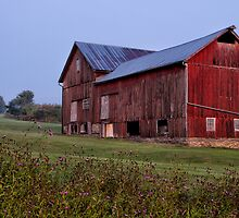 Olde Red Barn by Jeff Palm Photography