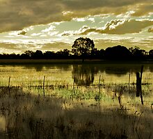 Flooded Farm - Pano by D-GaP