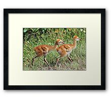 You can`t have it all, mom said we have to share! Framed Print