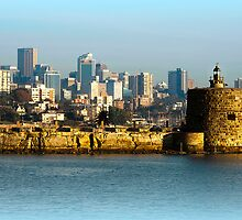 Fort Denison is our history ! by miroslava