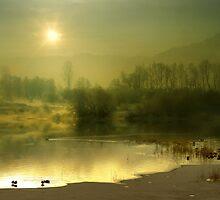 One Spring Morning by Igor Zenin