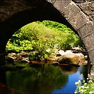 Dark Bridge at Dartmeet by CameraMoose