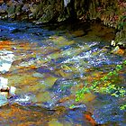 Impressionistic Creek by Robert Zunikoff