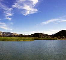 Cachuma Lake California by Renee D. Miranda