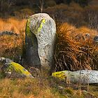 Rocks 6 by Tony Theobald