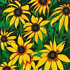 Black-eyed Susans by Barbara  Strand