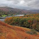 Autumn in Grasmere by Irina Chuckowree