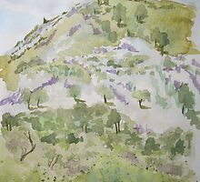 Son Fe Hillside in Mallorca, Water colour by Emily King