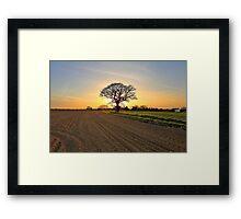 A Sunset Silhouette Framed Print
