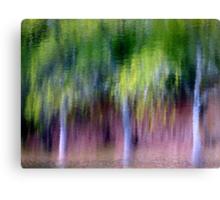 Spring Rain... Canvas Print