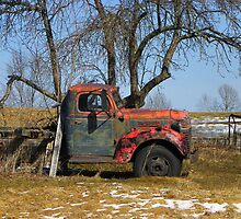 Old Tree, Old Truck by MaryinMaine