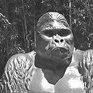 M'bongo, Zoo Memorial by heatherfriedman