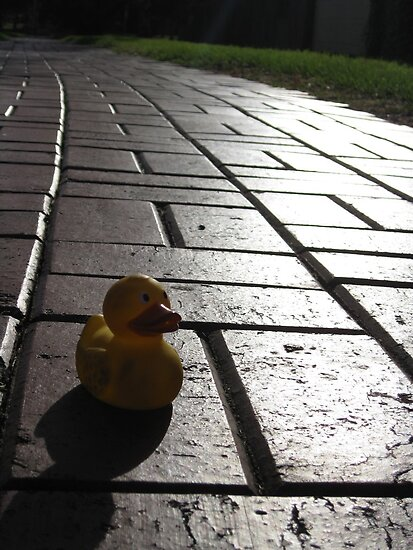 Yellow Rubber Duck On A Red Brick Road by Sammy Nuttall