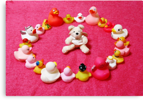 Angel Bear in Duck Blessing Circle by Sammy Nuttall