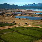 moulting lagoon, the hazards. eastcoast, tasmania by tim buckley | bodhiimages