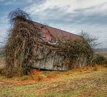 Leaning Barn by Monte Morton
