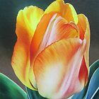 Spring yellow tulip by lanadi