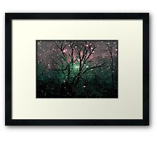 Forest Magic © Framed Print