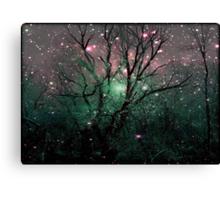 Forest Magic © Canvas Print