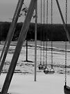Frozen Swings (Black and White) by Nevermind the Camera Photography