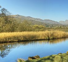 The River Brathay At Elterwater by Jamie  Green
