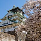 Sakura at Osaka by LeesDynasty