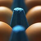 Eggs by ShotsOfLove