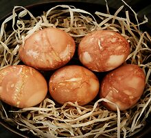 Rustic Dyed Eggs by lunatorium