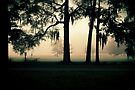 to feel the fresh air again by Jamie McCall