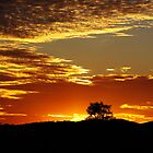 wonderful sunset - Australia by Debellez