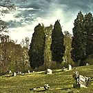 """THE CEMETERY""... a Series... #14 A Countryside Cemetery   by © Bob Hall"