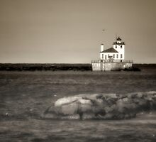 Oswego West Pierhead Lighthouse by Jeff Palm Photography