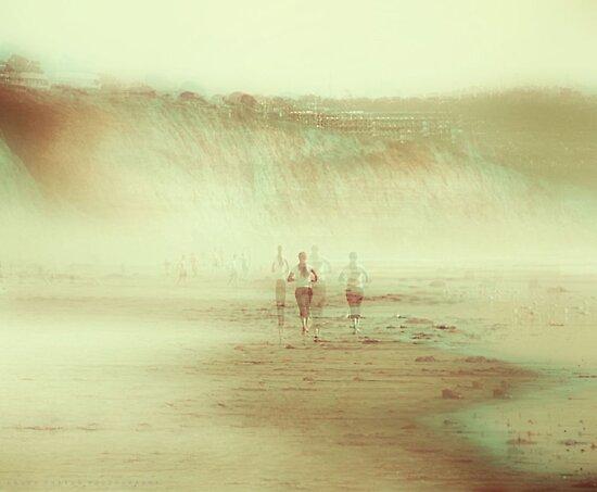 SOUL RUN by Laura E  Shafer